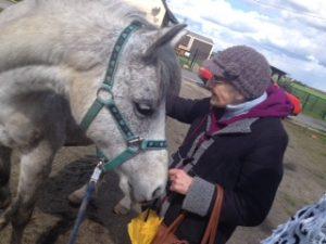 Pony und Oma